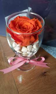 Birthday n special Gifts _Preserved flowers