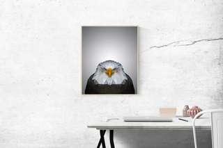 Polygon Art - Eagle