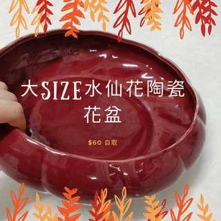 大紅紫水仙花盆擺設靚靚|無孔|水培陶瓷器|陶瓷花盆擺件