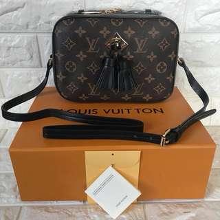 Louis Vuitton saintonge camera bag