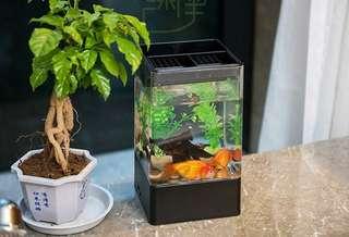 Square glass fish tank aquarium turtles tank golden fish tank creative small fish tank ecological fish tank