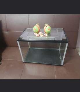 Fish Tank + FREE Accesories