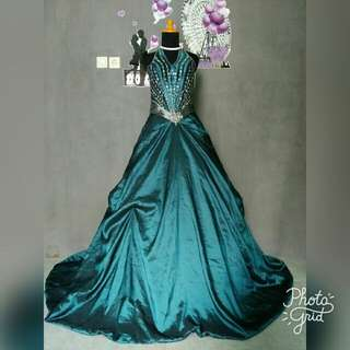 Ball gown prewed gown