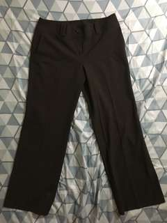 Ann taylor dark brown trousers size 32 length 38