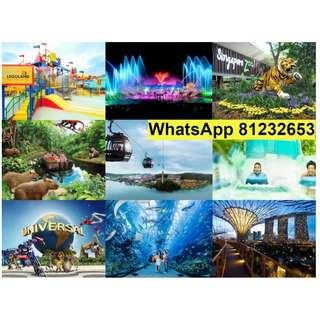 Zoo / Bird Park / Night Safari / River Safari / Wings of time / Madame Tussauds / Gardens by the bay / MBS Skypark / Legoland - Best deals