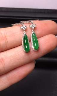 翡翠A貨18K金鑲嵌耳環Jade Earrings