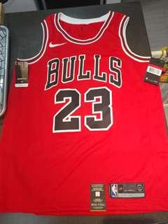 Nike Swingman #23 Michael Jordan Bulls L (48) size