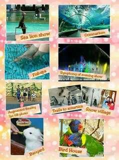 Discounted Manila Ocean park