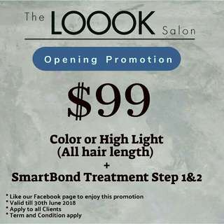 Whole head Hair Color And Treatment Promotion