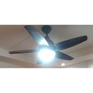 Samaire Black Ceiling Fan Going Cheap (1 year old only)