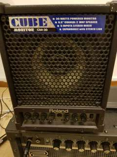 Roland Cube Monitor CM- 30