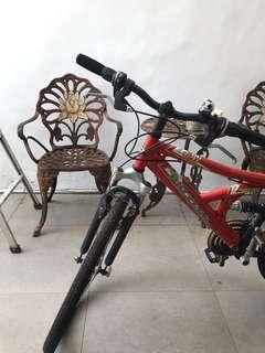 Sepeda Polygon DH120