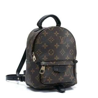 Louis Vuitton Palm Spring Mini Backpack Monogram