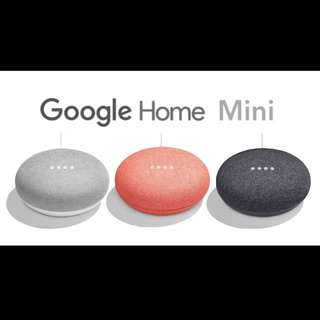 🇯🇵日本✈️直送 Google Home Mini