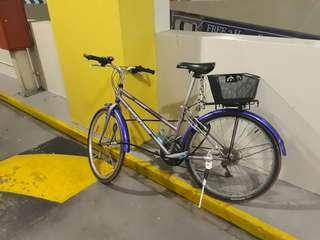 Bicycle polygon.