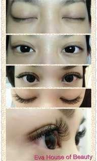 korea Eyelash Extensions