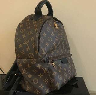 Louis vuitton palm spring backpack
