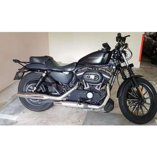 2011 Harley Davidson Iron 883 Sportster