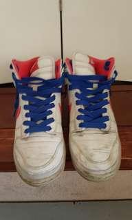Nike vintage dunks