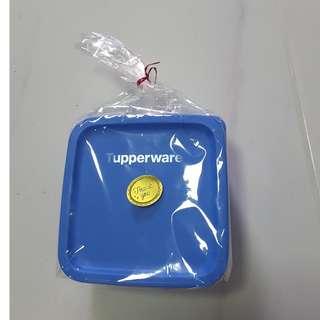 Tupperware sandwich square container