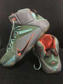 Lebron 12 AUTHENTIC Size 12 (REPRICED)
