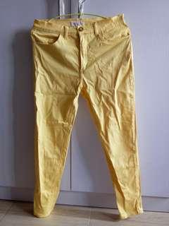 Pazzo Yellow Pants