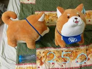 🚚 (可議價)柴犬兩隻