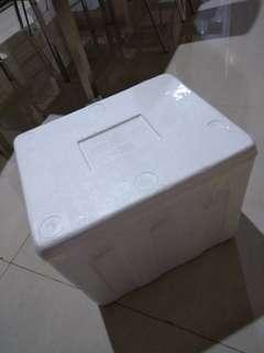 Sterofoam box P40 L30 T33