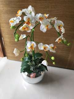 Artificial orchid flower arrangement