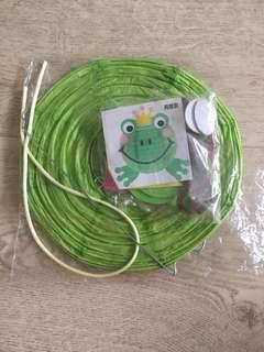 DIY Frog 🐸 Lantern