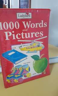ladybird 1000 words and pictures