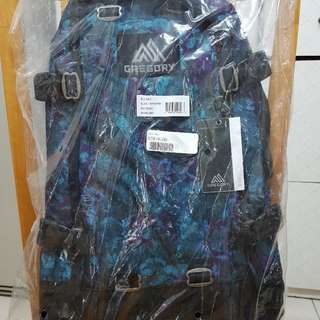 GREGORY BACKPACK 22L ALL DAY 藍花