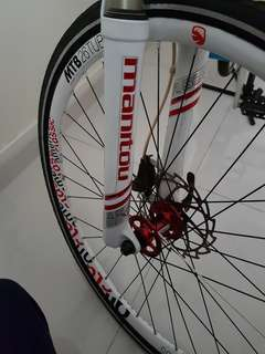 Mountain bike customised
