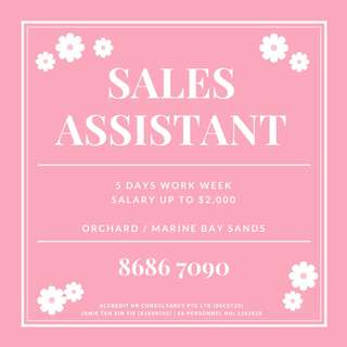 Sales Assistant up to $2,200