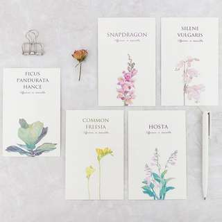 (PO) The Floral Dictionary Postcards/ Post Cards
