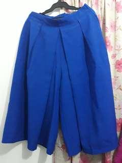 Sale!!! Skirt Pants