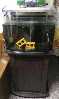 兩呎海彎魚缸(0.8mm)加底座