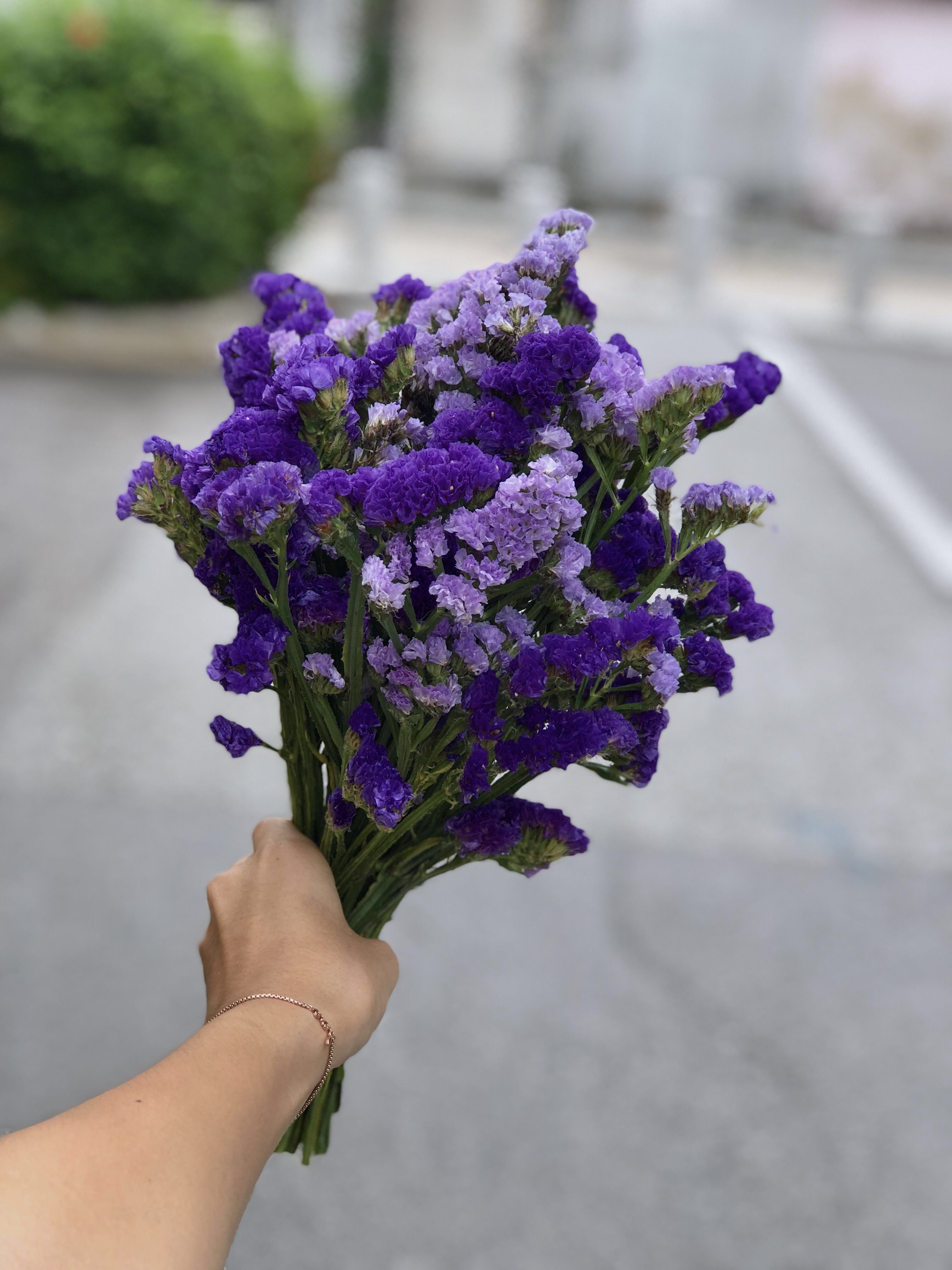 Dried Flower Bouquet Gardening Flowers Bouquets On Carousell