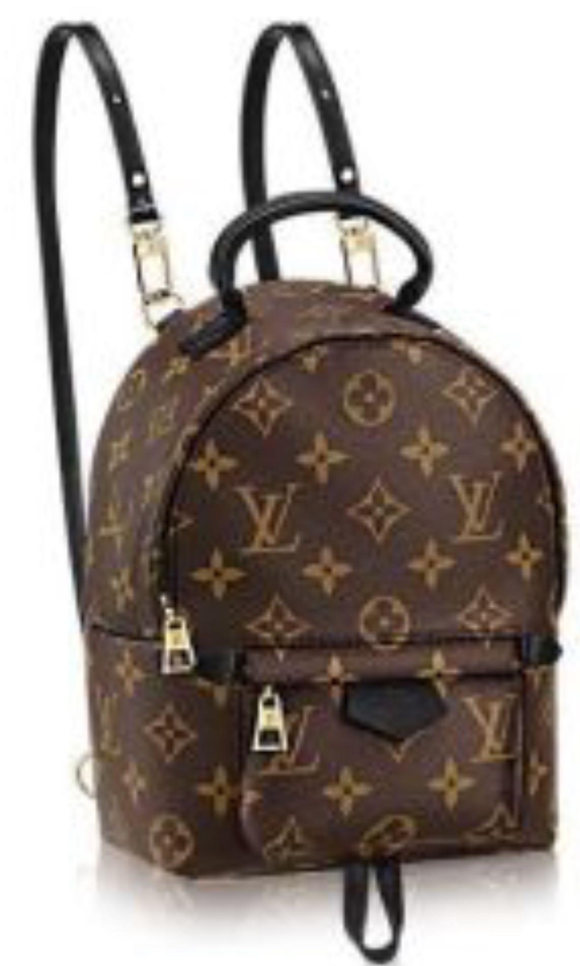 Louis Vuitton back pack 479bb6d003adb