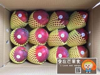 ♦️愛在芒果食♦️不吃後悔等明年!全部免運!