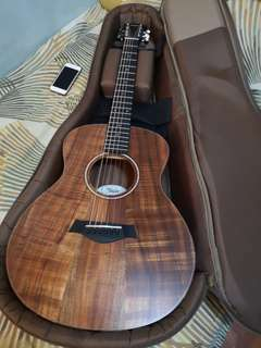 Taylor gs Mini eKoa