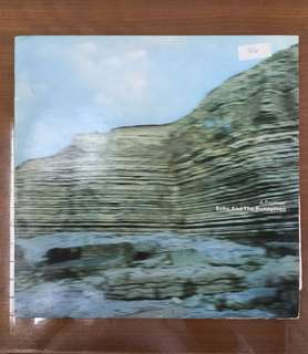 ECHO AND THE BUNNYMEN (A Promise) Rare Vinyl Record