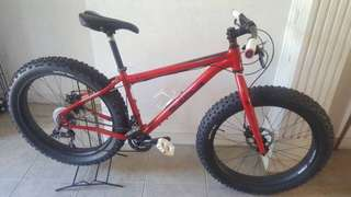 Salsa Fat Bike Stock