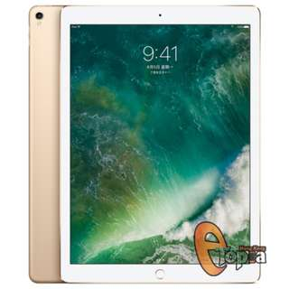 Apple iPad Pro 12.9 inch WiFi 256GB (2017)