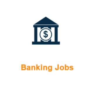 12 x Banking Admin Officer – Blue Chip Bank