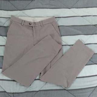 UNIQLO - Trouser