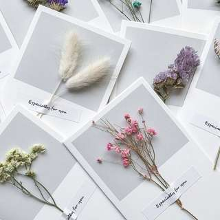 [PO] CARDS WITH DRIED FLOWERS