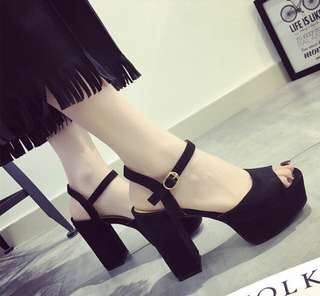 Thick Stable High Heel