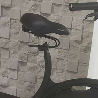 Absorber + saddle combo