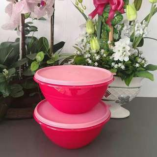 Tupperware Wonderlier Bowl 2pcs